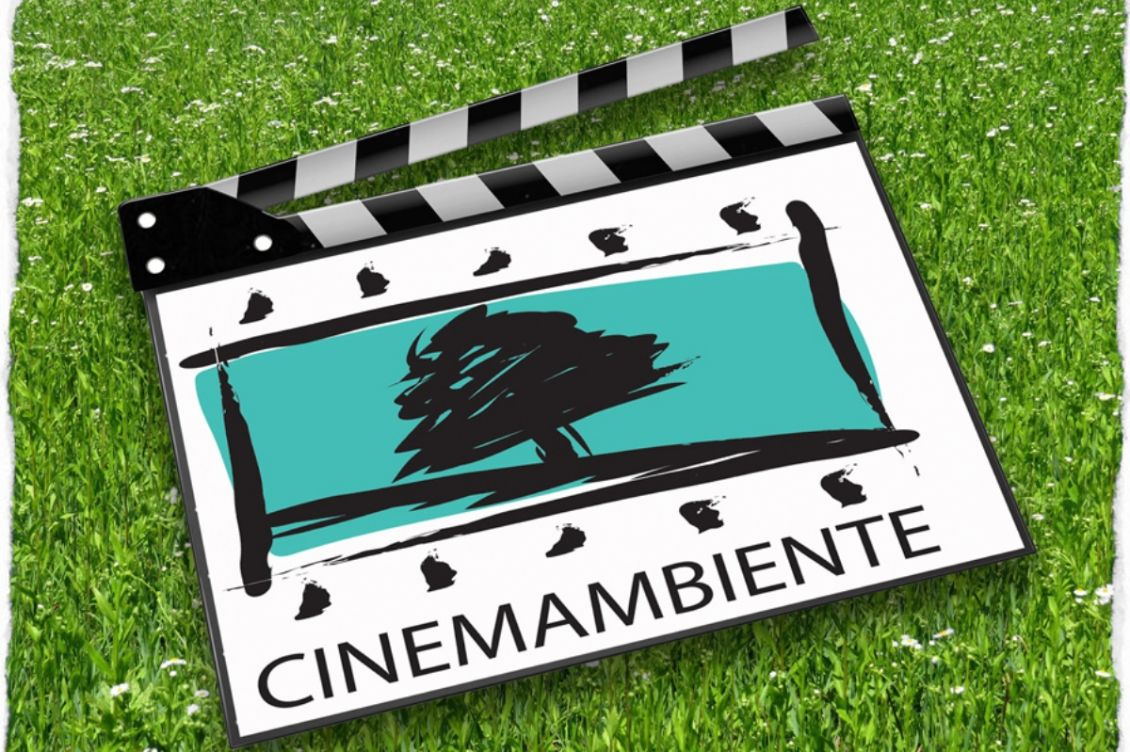 Festival CinemAmbiente: L'ambiente in celluloide